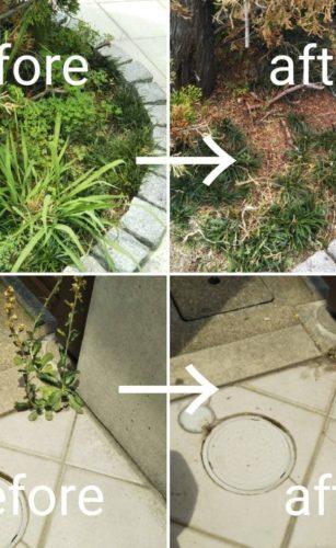 大阪府茨木市で清掃/掃除/ハウスクリーニングの家政婦・家事代行サービスの53回目ご利用報告