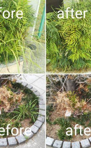 大阪府茨木市で清掃/掃除/ハウスクリーニングの家政婦・家事代行サービスの57回目ご利用報告