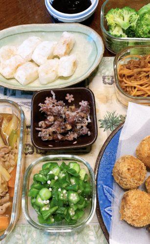 大阪府交野市で料理/清掃/掃除の家政婦・家事代行サービスの160回目ご利用報告
